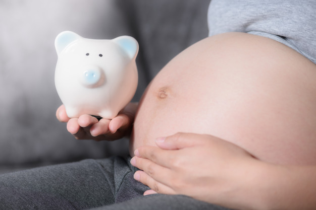 mujer-embarazada-hucha-su-mano-futuro-concepto-ninos_36247-283 (1)